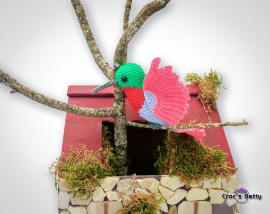 Bricole the Humming-bird